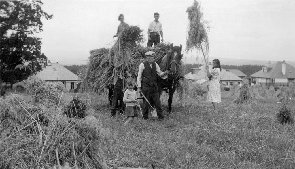 Black and white photo of young people helping an elderly man and his horse to harvest hay